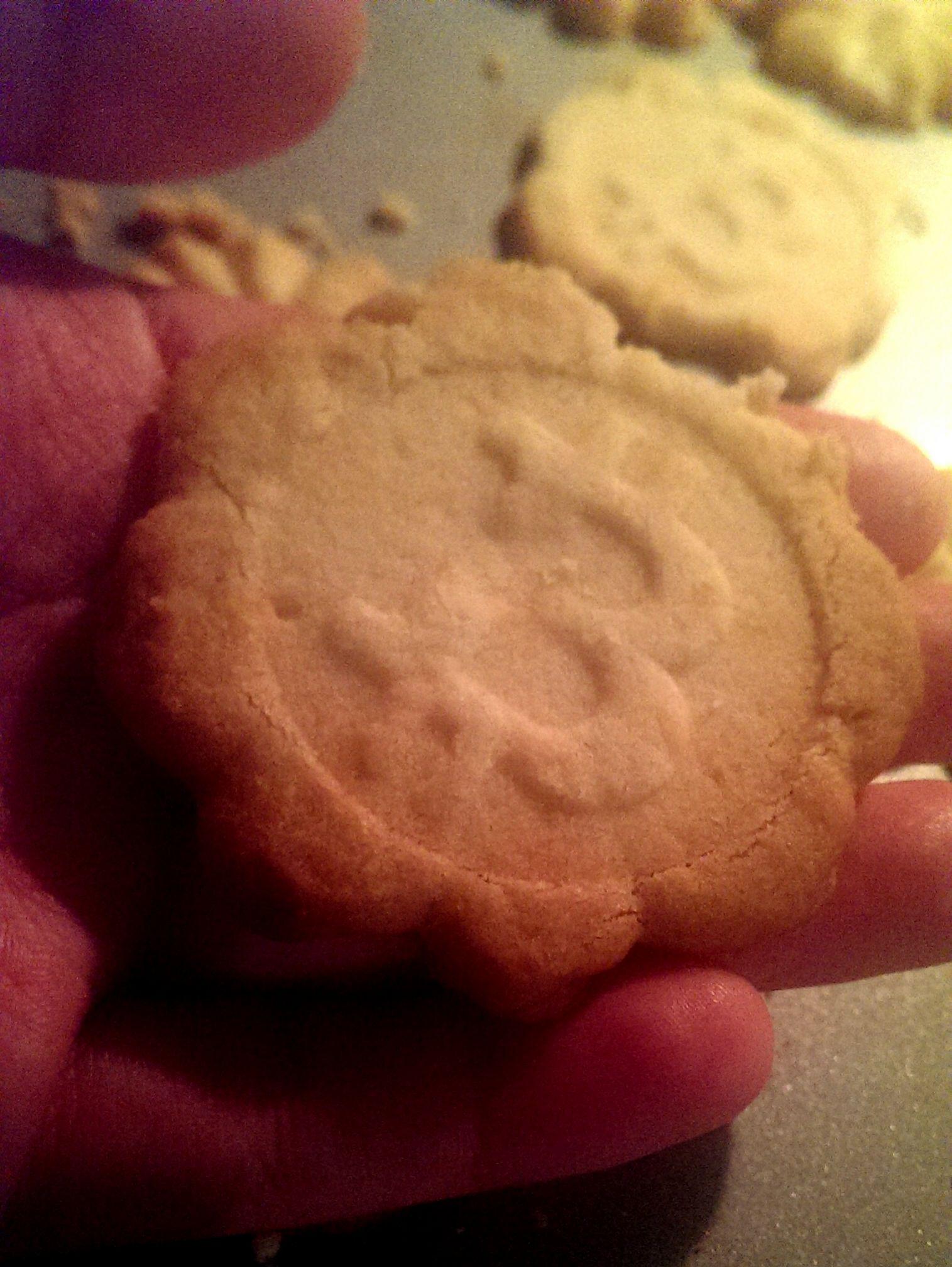 Crunchy Homemade Bitcookies mod