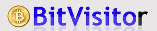bitvisitor.com