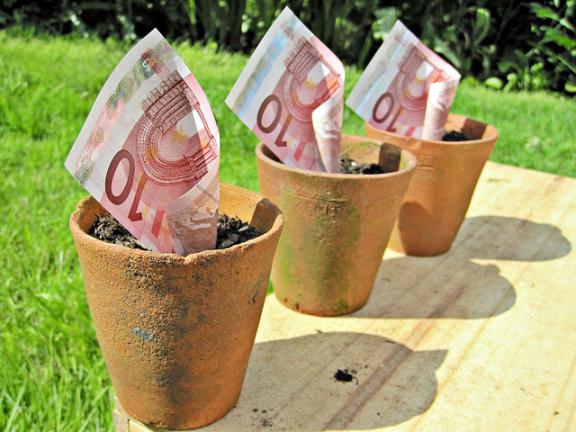 euro-flower-pots