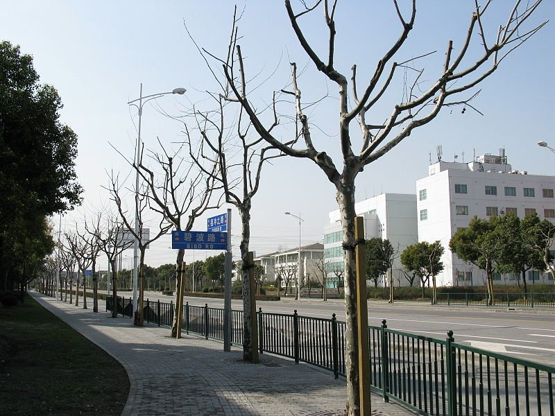800px-Zhangjiang_Hi-Tech_Park