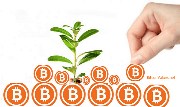 investing in bitcoin btc